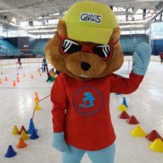 Attività sport su ghiaccio