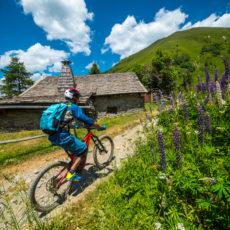 Percorsi MTB e Ciclo